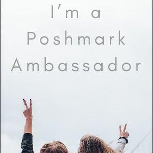 Other - Ambassador